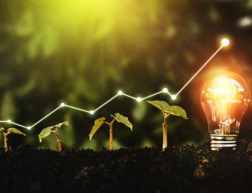 Verde e digitale: la ricetta per la ripresa economica!